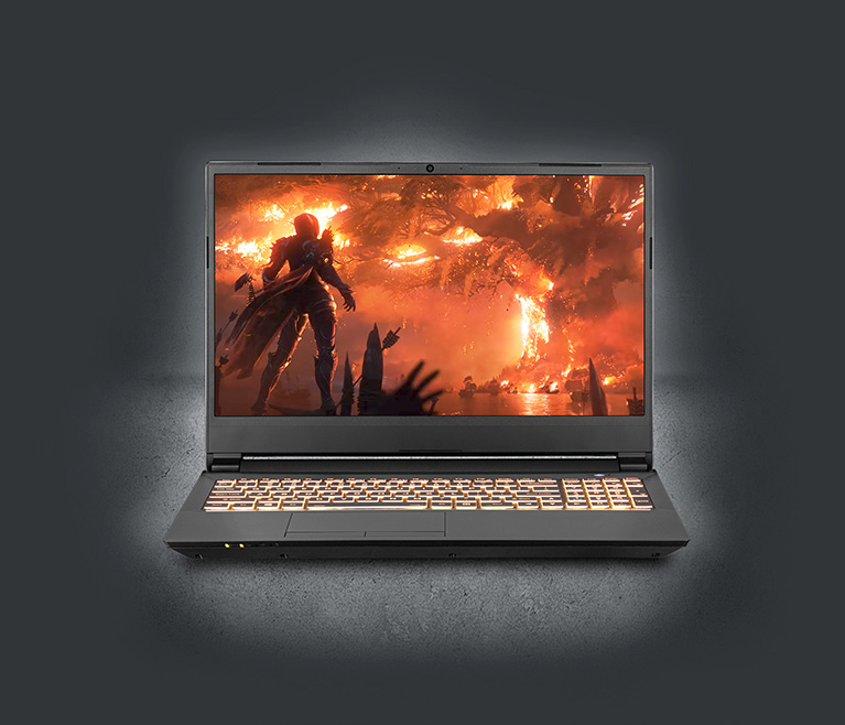 Notebook|NP7958F1