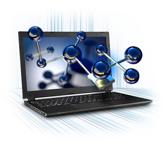 Sager NP2952 Workstatiion Laptop