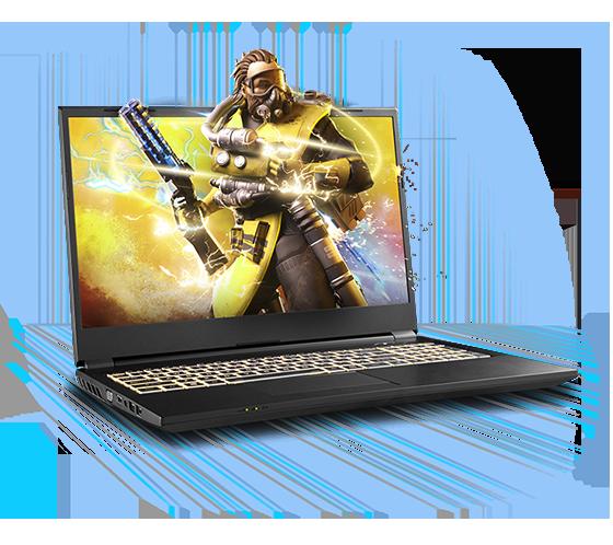 Sager NP3952Z Gaming Laptop