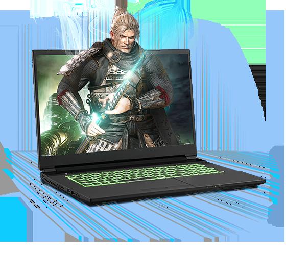 Sager NP7879PQ Gaming Laptop